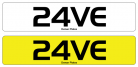 24VE raver rave number plate
